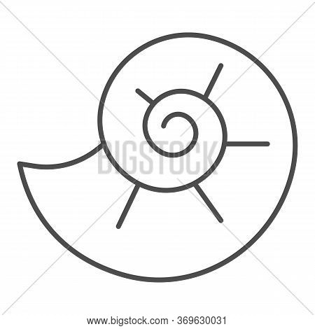Snail Shell Thin Line Icon, Nautical Concept, Circle Spiral Shaped Seashell Sign On White Background