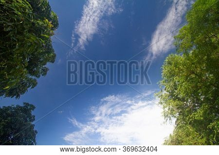 The Background Is A Blue Sky With White Clouds And Green Leaves As A Frame.