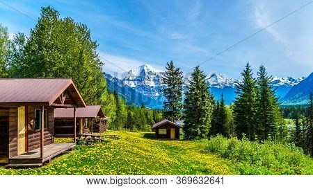 Cabins Surrounded By Dandelions In Robson Provincial Park, With The Highest Snow Covered Peak Of Mou