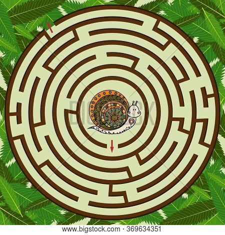 Colorful Circular Maze On The Theme Of Nature, The Snail Needs To Find A Way Out And The Maze To The
