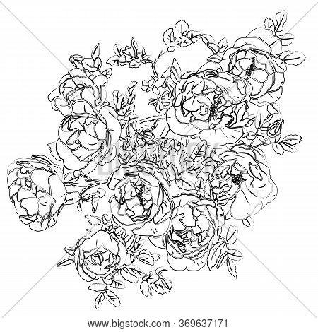 Retro Rose Silhouette, Great Design For Any Purposes. Black White Vector Illustration. Hand Drawn De