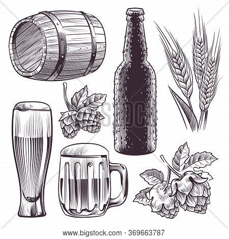 Hand Drawn Beer. Mug, Barrel And Beer Glass And Bottle, Wheat Or Malt Ears, Hops. Vintage Engraving