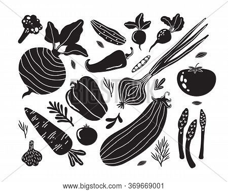 Set With Hand Drawn Doodle Vegetables In Trendy Organic Style. Flat Icons Cucumber, Carrot, Onion, T