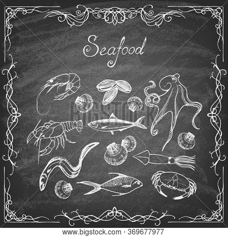 Set Of Hand-drawn Elements Seafood On Blackboard