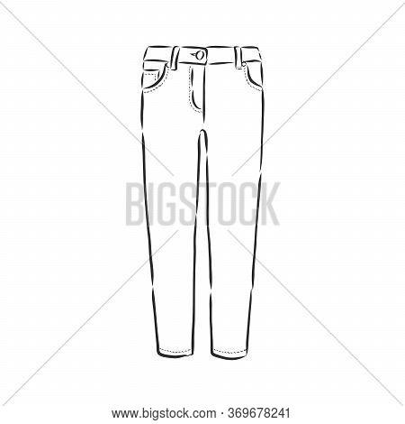 Vector Illustration Of Women S Skinny Pants. Women S Skinny Jeans, Vector Sketch Illustration, Jeans