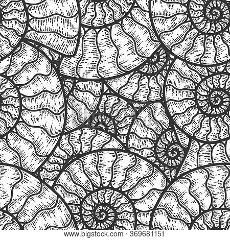 Nautilus Cephalopods Seamless Pattern. Sketch Scratch Board Imitation. Black And White.