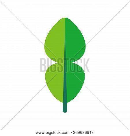 Kaffir Lime Leaf Icon Design, Flat Design Style, Vector Illustration Design