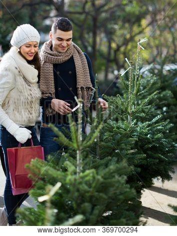 Happy 30s Couple Selecting Christmas Tree At X-mas Fair. Focus On Boy
