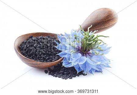 Black cumin seeds with nigella sativa flower on white background