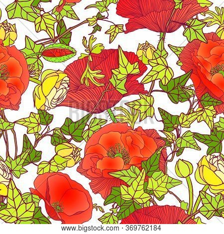 Seamless Vector Floral Pattern Of Ivy Leaves, Poppies And Ranunculus On White Background