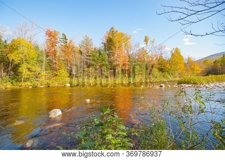 Swift River Flowing Gently Over Shallow Stony Bed And Past Stunningly Colorful Forest In Maine Usa.