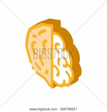 Walnut Nut Icon Vector. Isometric Walnut Nut Sign. Color Isolated Symbol Illustration