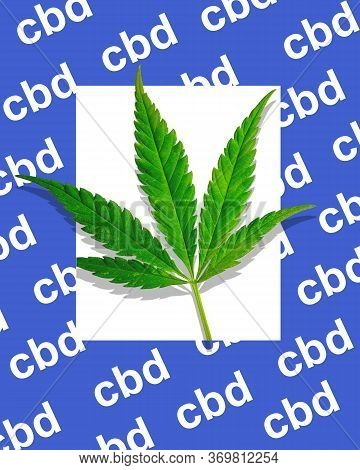 Green Leaf Of Marijuana On A White Background In A Blue Thick Frame With The Inscription Cbd