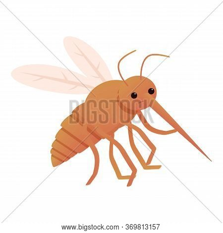 Mosquito Insect Icon. Cartoon Of Mosquito Insect Vector Icon For Web Design Isolated On White Backgr