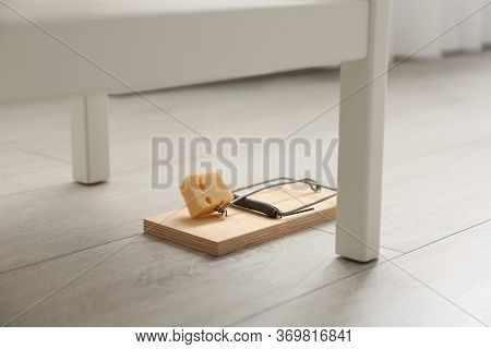 Mousetrap With Piece Of Cheese Indoors. Pest Control