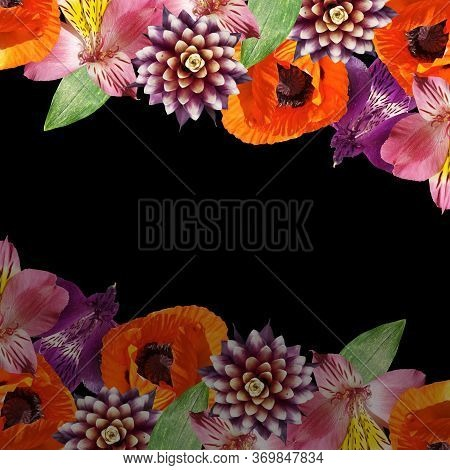 Beautiful Floral Background Of Guzmania, Alstroemeria And Poppy. Isolated