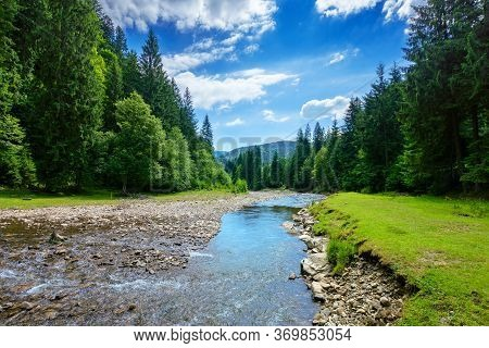 River In The Mountain Landscape. Beautiful Nature Scenery With Water Flow Among The Forest. Sunny Da