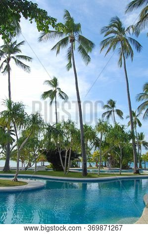 Palawan, Ph - Nov 30 - Swimming Pool And Coconut Trees At Dos Palmas Island Resort On November 30, 2