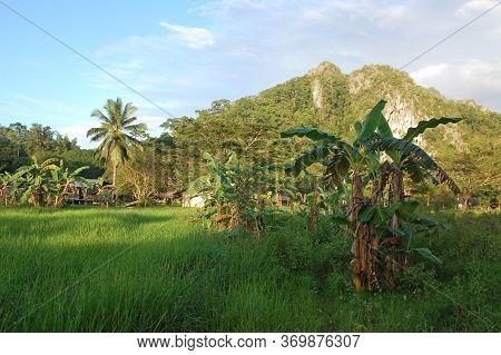 Palawan, Ph -  Nov 29 - Mountain And Trees Scenic View At Ugong On November 29, 2009 In Puerto Princ