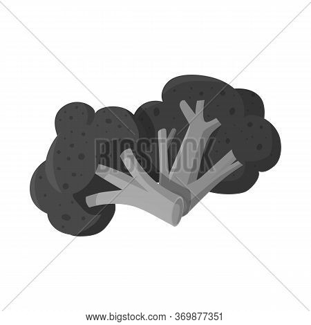 Vector Design Of Broccoli And Cabbage Logo. Set Of Broccoli And Doodle Stock Vector Illustration.
