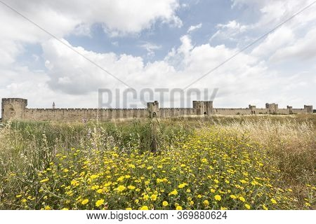 Landscape In The Camargue District In Southern France