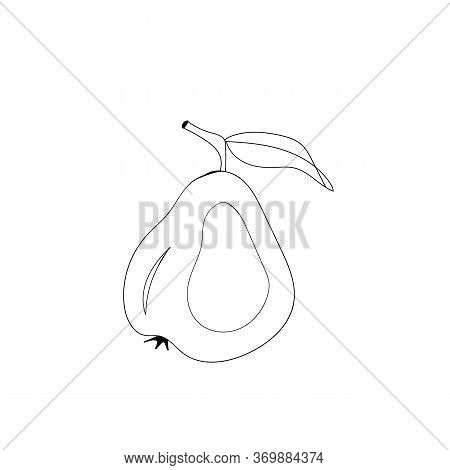 Line Art Whole Pear Vector Illustration Pear Stroke Icons, Fruits Icons On White Background, Isolate