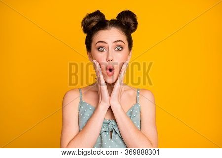 Portrait Of Astonished Millennial Girl Hear Wonderful Bargain Novelty Impressed Scream Touch Hands C