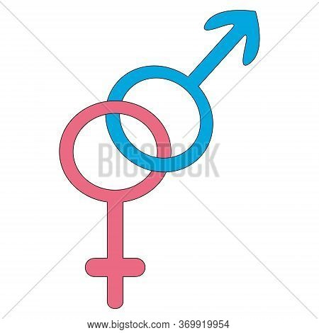 Symbol Of Heterosexuality. Color Vector Illustration. Male And Female Gender. Signs On An Isolated W