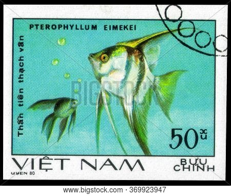 Saint Petersburg, Russia - May 31, 2020: Postage Stamp Issued In The Vietnam With The Image Of Fresh