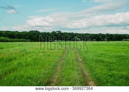 The Road On A Green Meadow. Country Road. Man Way Concept. Choosing Your Own Path. Life Road. The Pa