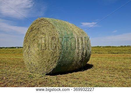 A Huge Lone Round Bale Of Alfalfa In A Field.