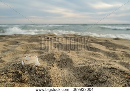 Disposable Plastic Dirty Coffee Cup Discharged Waste, Throw Pollution, Sea Shore