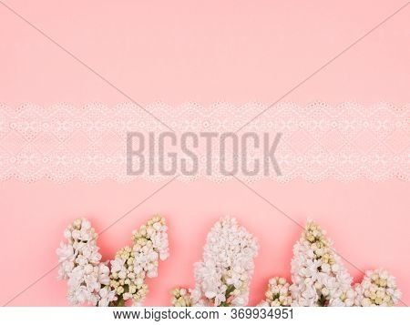 White Lilac And Lace On Pink Background.