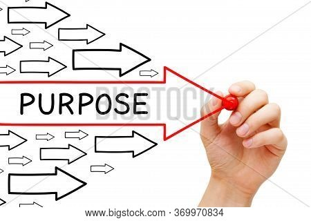 Hand Drawing Purpose Arrows Concept With Marker On Transparent Wipe Board Isolated On White Backgrou