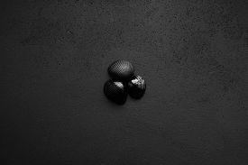 Trendy Minimalistic Matte Black Background With Shells.