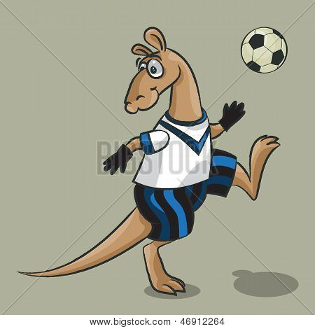 Kangaroo - The Football Player
