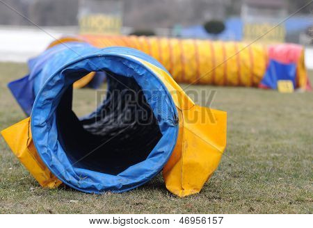 Agility equipment tunnel for dog training on field poster