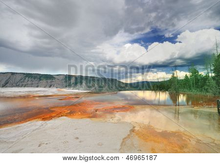 A bacterial pool from Mammoth Hot Springs