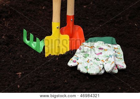 Colorful Kit For Gardening