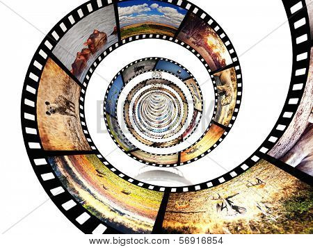poster of 3d image of film strip with african animals