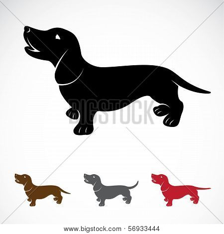 Vector Image Of An Dog (dachshund)