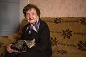 An elderly woman with cat. poster