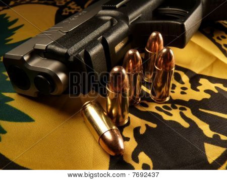 Bullets and gun on a Gadsden flag