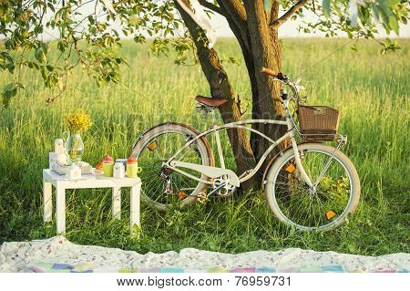 Bicycle with picnic set in summer day