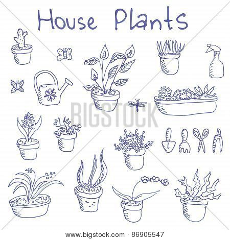 Big set of liner pen hand-drawn housplants and garden tools