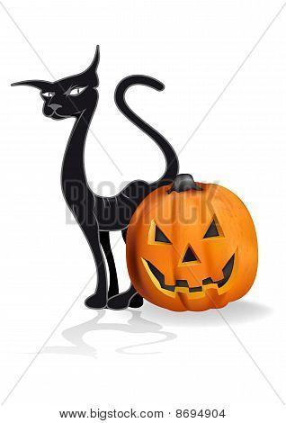 Pumpkin And A Black Cat