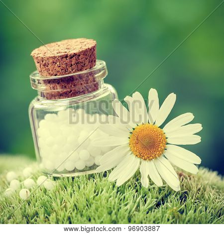Bottle Of Homeopathy Globules And Daisy Flower On Green Moss. Retro Styled.
