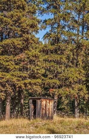 Outhouse At The Edge Of The Forest