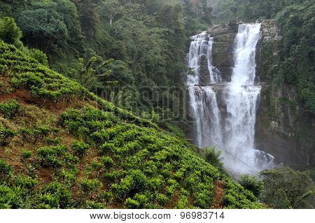 Beautiful Waterfall In Sri Lanka