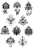 Indian black floral design elements with lacy flowers with teardrop shaped petals and pointed leaves, adorned by  paisley ornament on white background poster